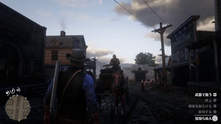【RDR2】ポーカーで金を溶かす配信 ※超下手 ※無言配信 レッドデッドリテンプション2 Red  Dead  Redemption 2
